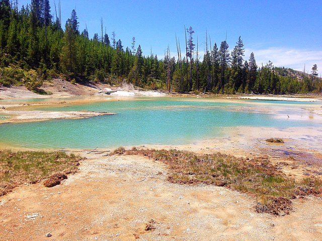 Cool Yellowstone Pics