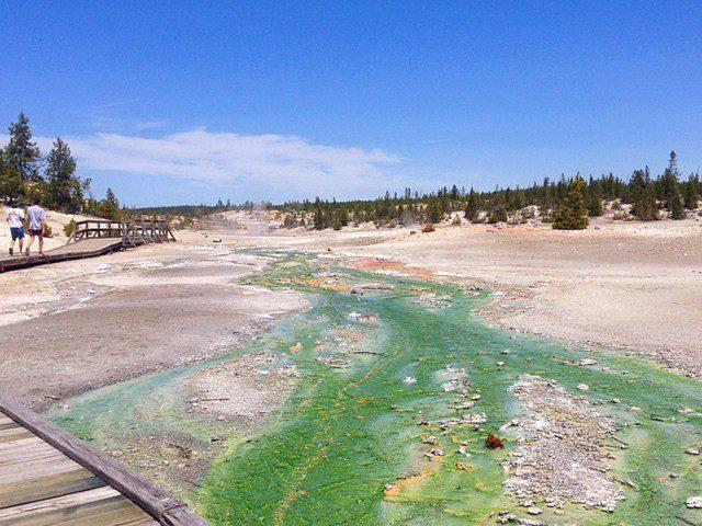 Yellowstone Run Off